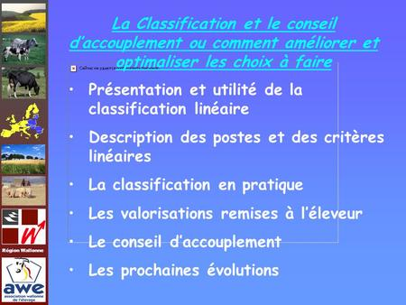 La Classification et le conseil