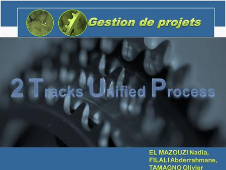 2 Tracks Unified Process