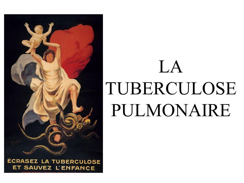 PLAN I)EPIDEMIOLOGIE II)PRIMO-INFECTION TUBERCULEUSE III)TUBERCULOSE PULMONAIRE COMMUNE IV)AUTRES FORMES CLINIQUES V)PREVENTION