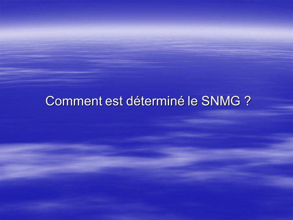 Plusieurs facteurs interviennent dans la détermination du SNMG : Plusieurs facteurs interviennent dans la détermination du SNMG : * Lévolution de la productivité moyenne nationale enregistrée ; * Lévolution de lindice de consommation ; * Lévolution de la conjoncture économique générale.