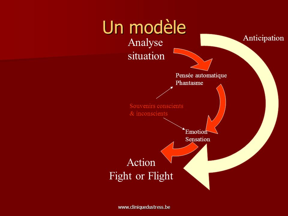 www.cliniquedustress.be Un modèle Analyse situation Action Fight or Flight => Freeze Anticipation Pensée automatique Phantasme Émotion Sensation Souvenirs conscients & inconscients