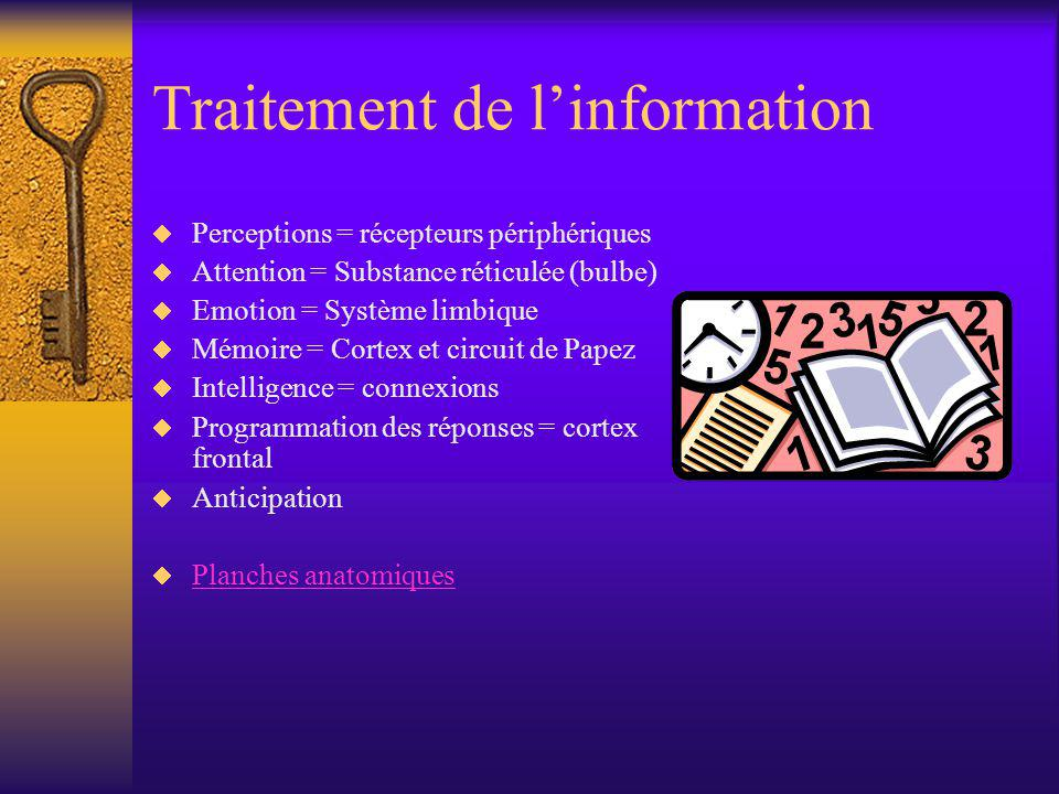 Perceptions Traitement de linformation –Sensibilité récepteurs périphériques –Vitesse traitement de linformation –Distorsions –Nécessité attention Implications Stimuli Diversité des sources sensorielles Privation sensorielle