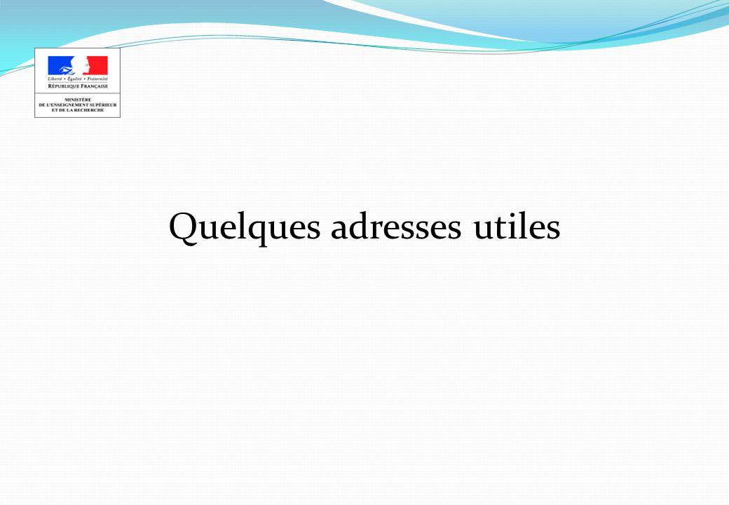 Adresses utiles Ministère de lenseignement supérieur et de la recherche http://www.recherche.gouv.fr Ministère des affaires étrangères http://www.diplomatie.gouv.fr