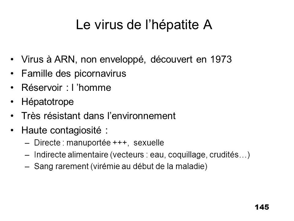 146 Hépatite A : Situation épidémiologique dans le monde