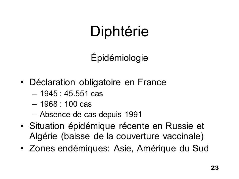 24 Vaccin diphtérique Anatoxine (formol), injectable –toxine détoxifiée mais immunogène –Dose enfant : D = 30 UI –Dose adulte (rappel) : d = 2 UI Vaccination obligatoire