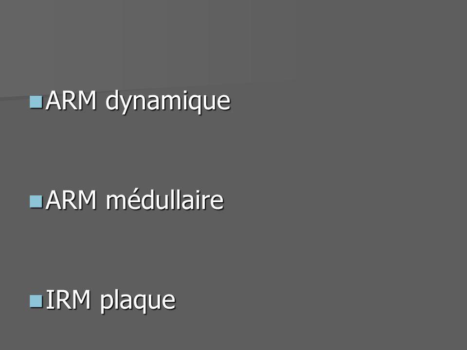 Angiographie Examen de référence Angiographie Examen de référence Challenge important Challenge important –Artères et veines très petit calibre (500 ) –Vx à la surface de la moelle avec des formes similaires Plusieurs séquences dARM Plusieurs séquences dARM –ARM dynamique –ARM 3D TOF Haute résolution spatiale Résolution temporelle ARM médullaire Injection