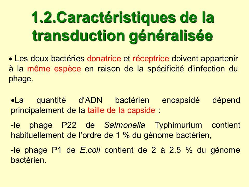 Le plus souvent la transduction ne concerne quun seul gène Dans une population de phages capables deffectuer une transduction généralisée, il ny a que très peu de particules transductrices.