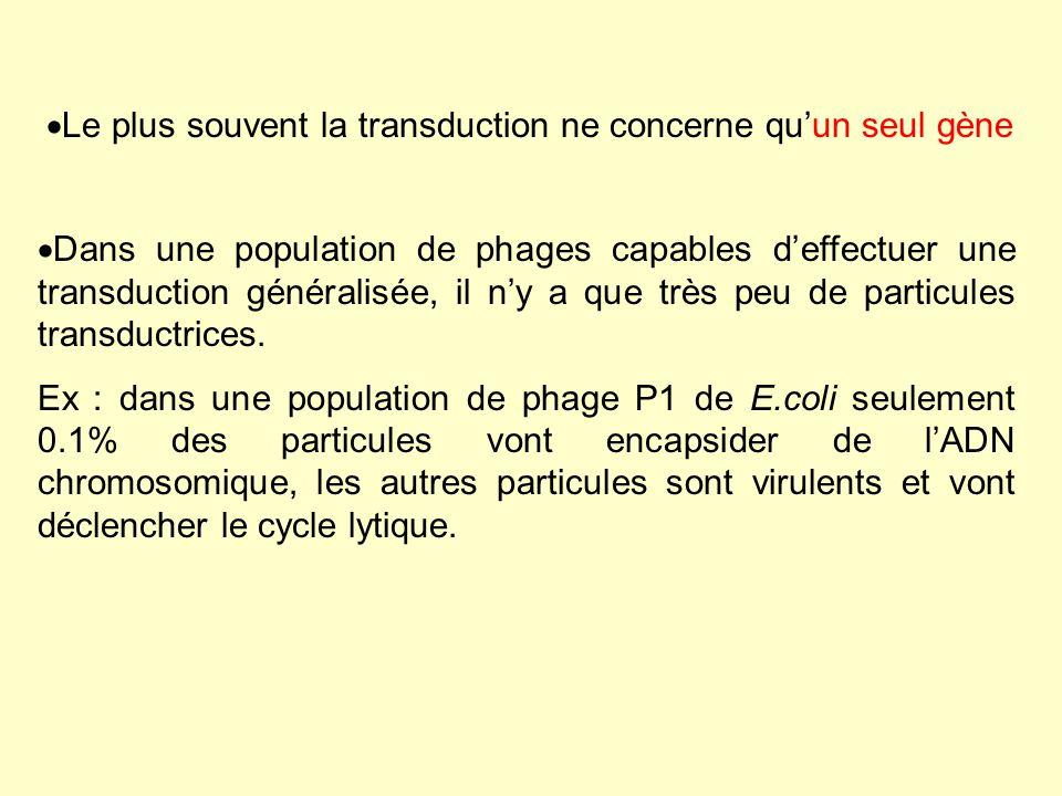 Ces points réunis font que la fréquence dobtention de cellules transduites pour un caractère donné est très faible (TP transduction).