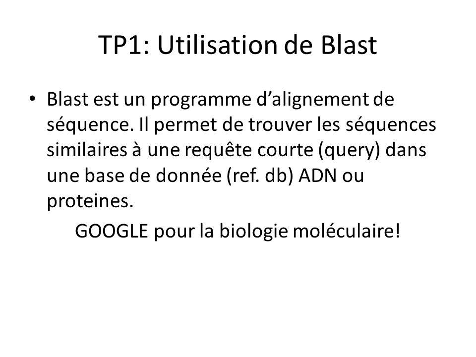 Question -1- Quelle est la fonction du programme BLAST Format Input / Output.