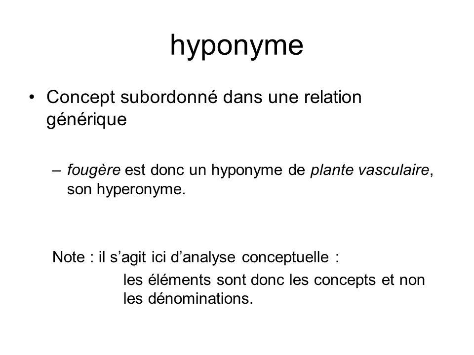 isonyme Concept qui se situe au même niveau dabstraction quun autre concept (dont ils partagent le même hyperonyme) fern et flowering plant sont donc isonymes (ou co- hyponymes) car ils ont le même hyperonyme, vascular plant.