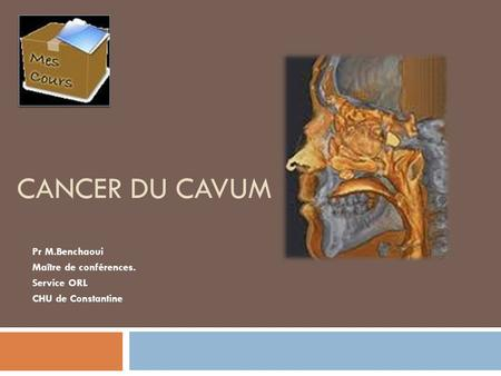 Rhinologie dr f lagarde 1 les fosses nasales anatomie - Grille indiciaire maitre de conference ...