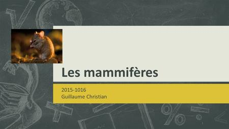 Les mammifères 2015-1016 Guillaume Christian.