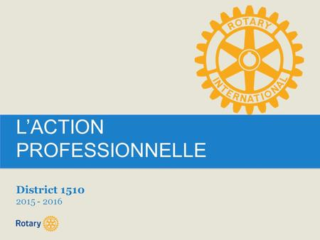 L'ACTION PROFESSIONNELLE District 1510 2015 - 2016.
