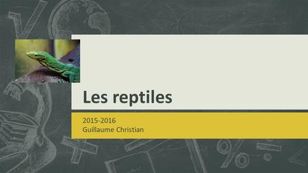 Les reptiles 2015-2016 Guillaume Christian.