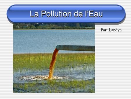 La Pollution de l'Eau Par: Landyn. 2 Types de Pollution 1. Direct 2. Indirect.