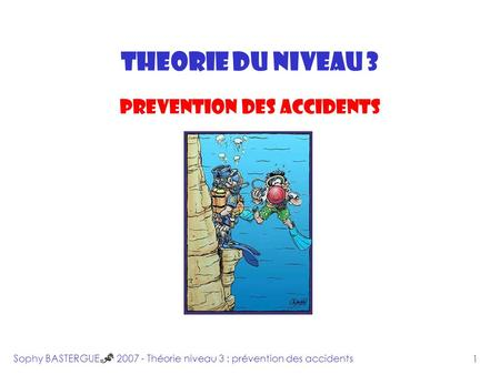 INTRODUCTION THEORIE DU NIVEAU 3 PREVENTION DES ACCIDENTS Sophy BASTERGUE 2007 - Théorie niveau 3 : prévention des accidents 1.