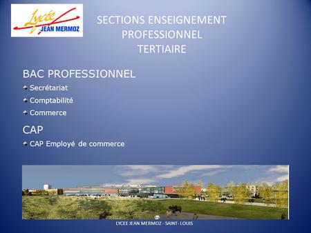 SECTIONS ENSEIGNEMENT PROFESSIONNEL TERTIAIRE