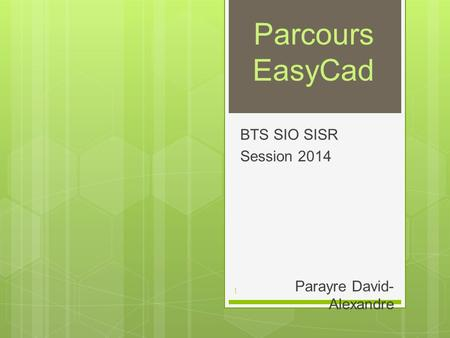 BTS SIO SISR Session 2014 Parayre David-Alexandre