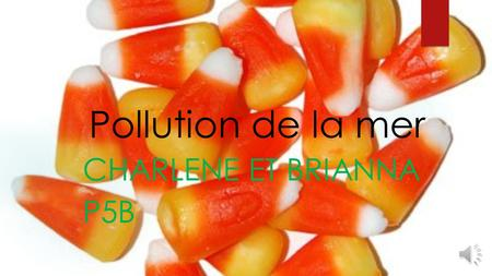 Pollution de la mer Charlene et Brianna P5B.