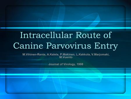 Intracellular Route of Canine Parvovirus Entry M.Vihinen-Ranta, A.Kalela, P.Makinen, L.Kakkola, V.Marjomaki, M.Vuento Journal of Virology, 1998.
