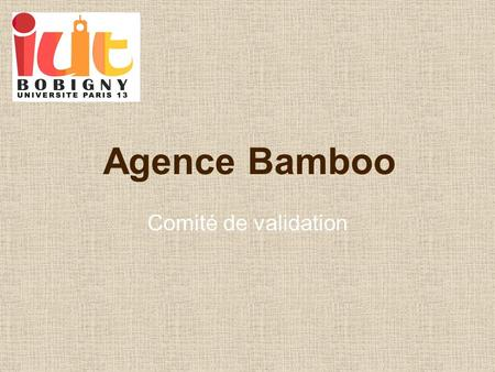 Agence Bamboo Comité de validation.