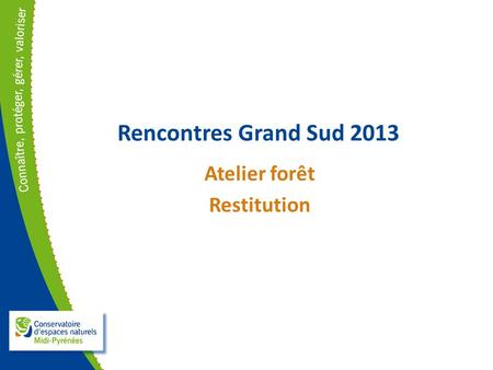 Rencontres Grand Sud 2013 Atelier forêt Restitution.