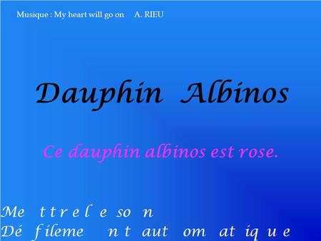 Dauphin Albinos Ce dauphin albinos est rose. Musique : My heart will go on A. RIEU.