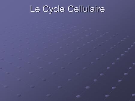 Le Cycle Cellulaire. L'interphase La mitose La cytocinèse.
