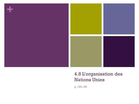 + 4.8 L'organisation des Nations Unies p. 185-196.