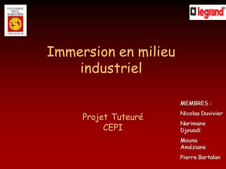 Immersion en milieu industriel