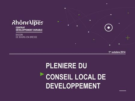 1 er octobre 2014 PLENIERE DU CONSEIL LOCAL DE DEVELOPPEMENT.