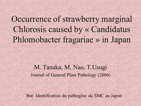 Occurrence of strawberry marginal Chlorosis caused by « Candidatus Phlomobacter fragariae » in Japan M. Tanaka, M. Nao, T.Usugi Journal of General Plant.