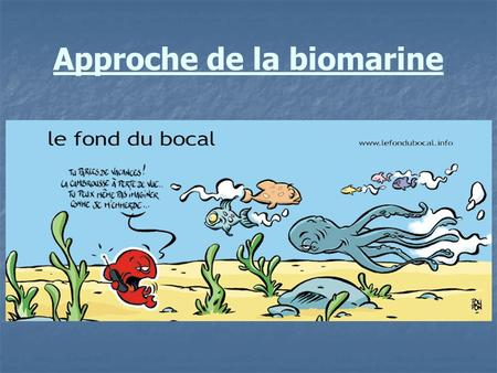 Approche de la biomarine. Eléments de classification.