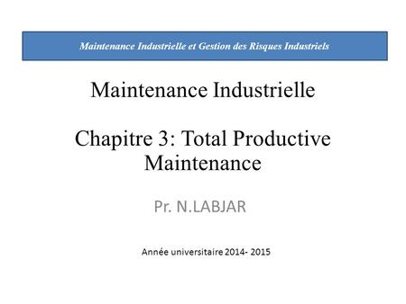 Maintenance Industrielle et Gestion des Risques Industriels
