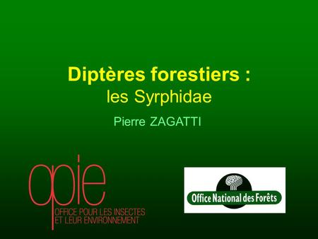 Pierre ZAGATTI Diptères forestiers : les Syrphidae.