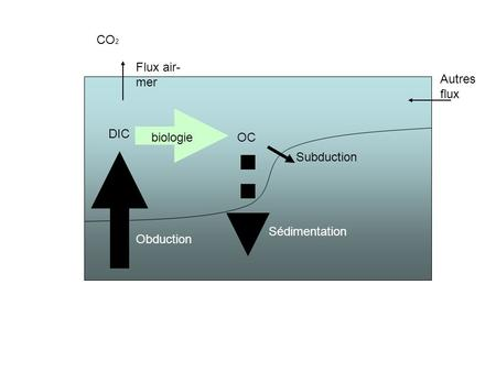 DIC OC CO 2 Flux air- mer Autres flux Obduction Sédimentation Subduction biologie.