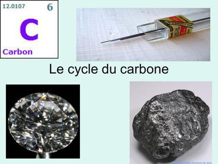 Le cycle du carbone.
