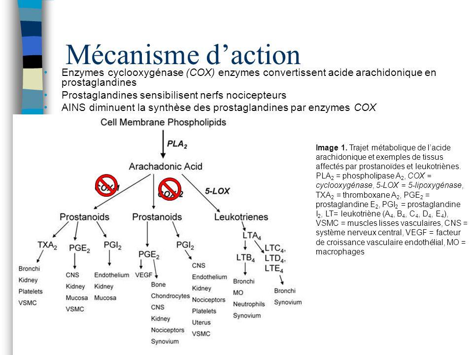 COX-1 est omniprésent dans les tissus Important pour protection de muqueuses gastrique Agrégation des plaquettes Propriétés antipyrétique, analgésique, et anti- inflammatoire sont liées à linhibition du COX-2 AINS sélectifs à COX-2 ont été développés pour diminuer la toxicité gastro-intestinale COX-2 est induite par les cytokines ou facteurs de croissance pour moduler linflammation des tissus et leur nociception AINS-ns vs.