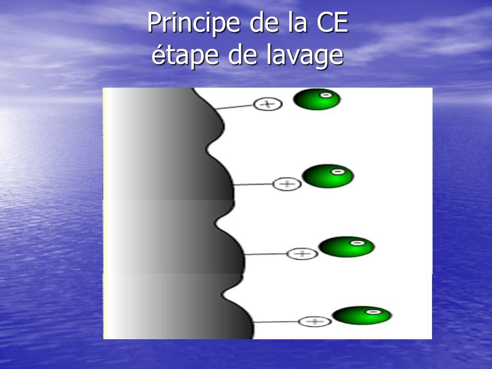 La chromatographie d é change é tape de la charge
