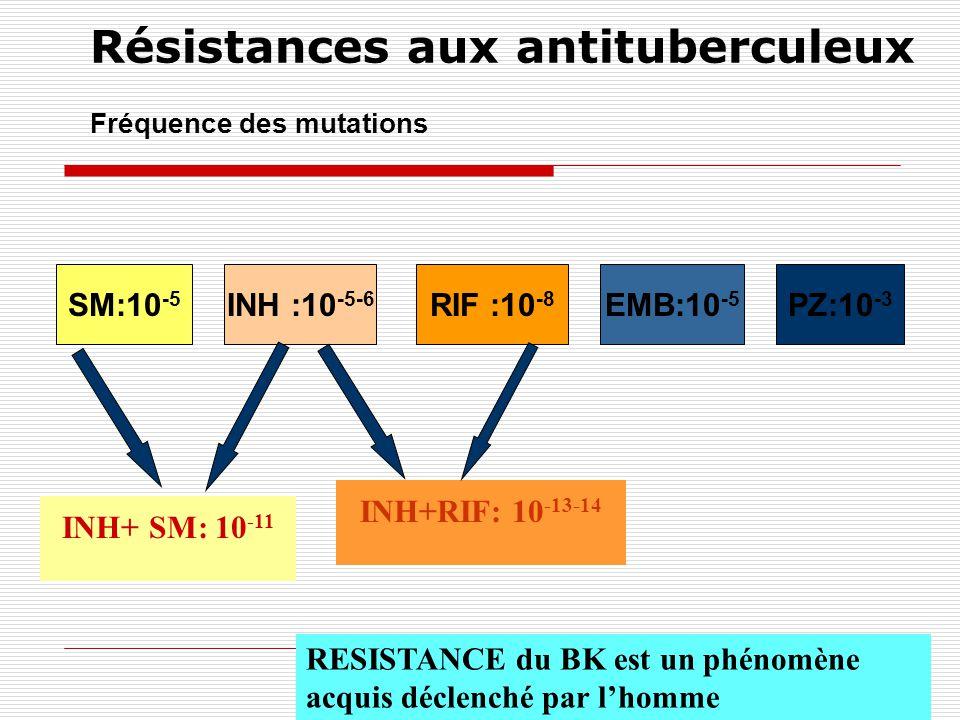 AntibiotiqueNature de la résistanceFréquence des mutations INH Gène KatG codant pour une catalase / peroxydase 47 % Gène InhA codant pour la biosynthèse des acides mycoliques 21 % Gène ahpc codant pour une alkyl-peroxydase réductase 10 % SM Gène rpsl codant la ss-U 12S 52 % Gène rrs codant la ss-U du ARNr 21 % RIF Gène rpo B codant la ss-U B de lARN polymérase 96 % EMB Gènes embA et embB de lopéron responsable de la synthèse de larabinogalactane - FQN Mutations non-sens dans le gène gyrA 75 % M.tuberculosis Supports génétiques de la résistance de M.tuberculosis aux antituberculeux 30%