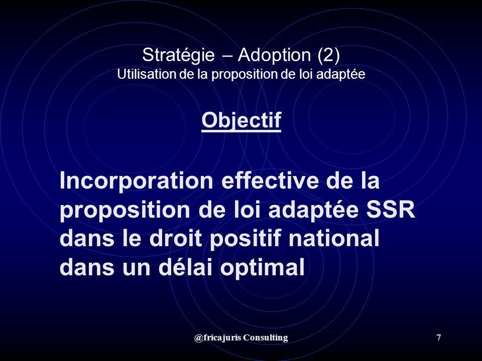 @fricajuris Consulting8 Stratégie – Adoption (2) Actions 1.