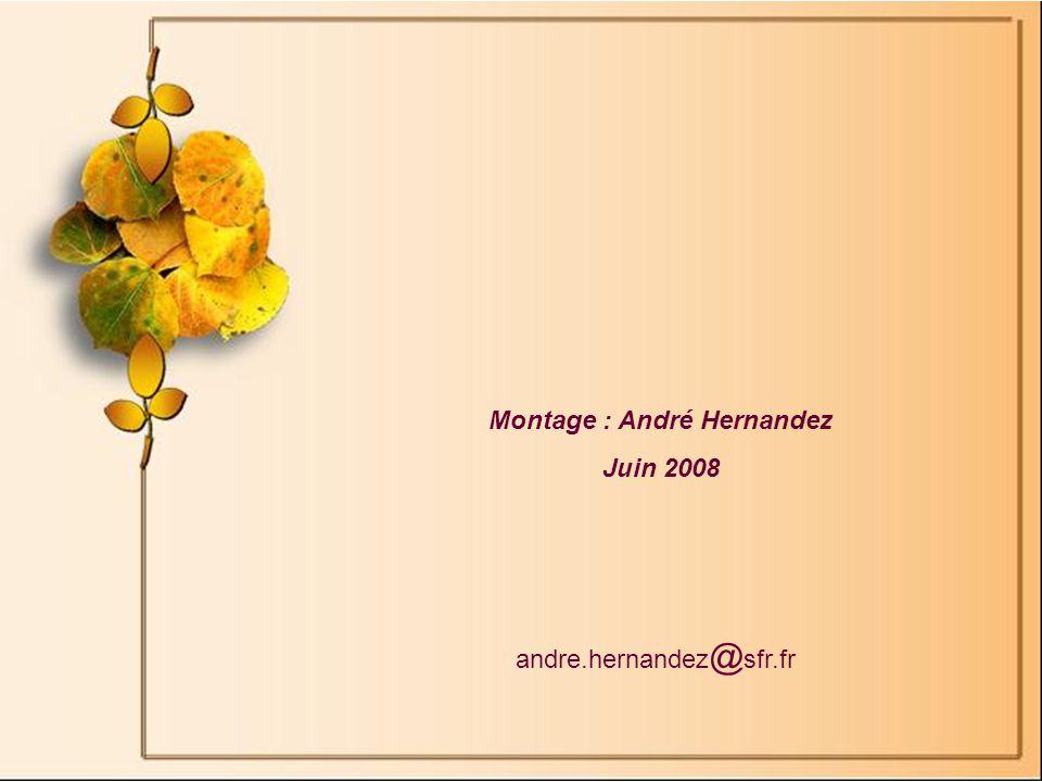 Montage : André Hernandez Juin 2008 andre.hernandez @ sfr.fr