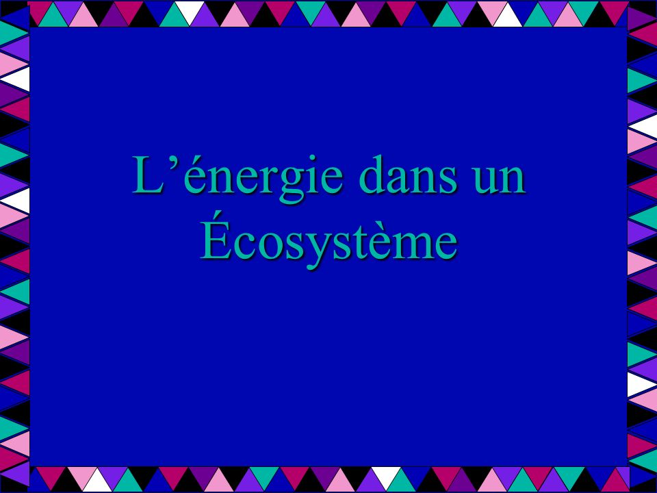 La source dénergie dans un écosystème est le soleil.