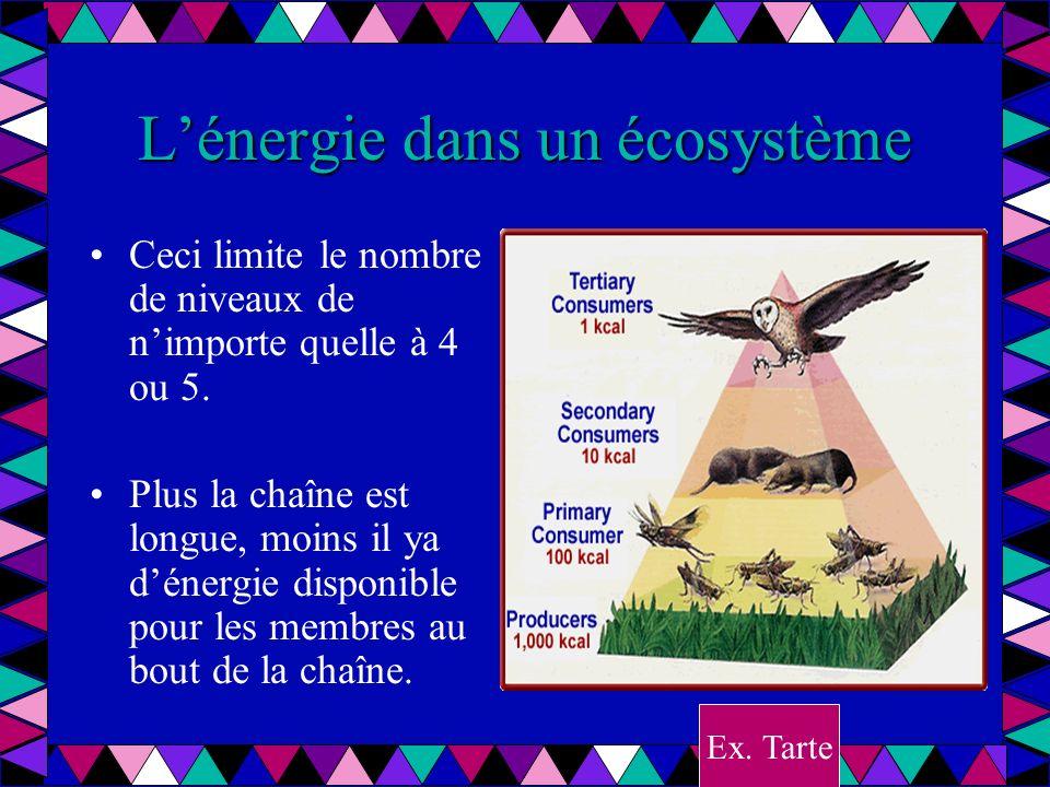 Les autres pyramides La pyramide des nombres indiquent combien de organismes de chaque espèce est présent dans lécosystème.