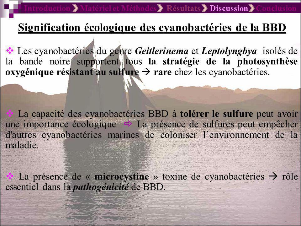 Introduction Matériel et Méthodes Résultats Discussion Conclusion Un rôle important en termes physico-chimiques de la structure de la bande La migration verticale.