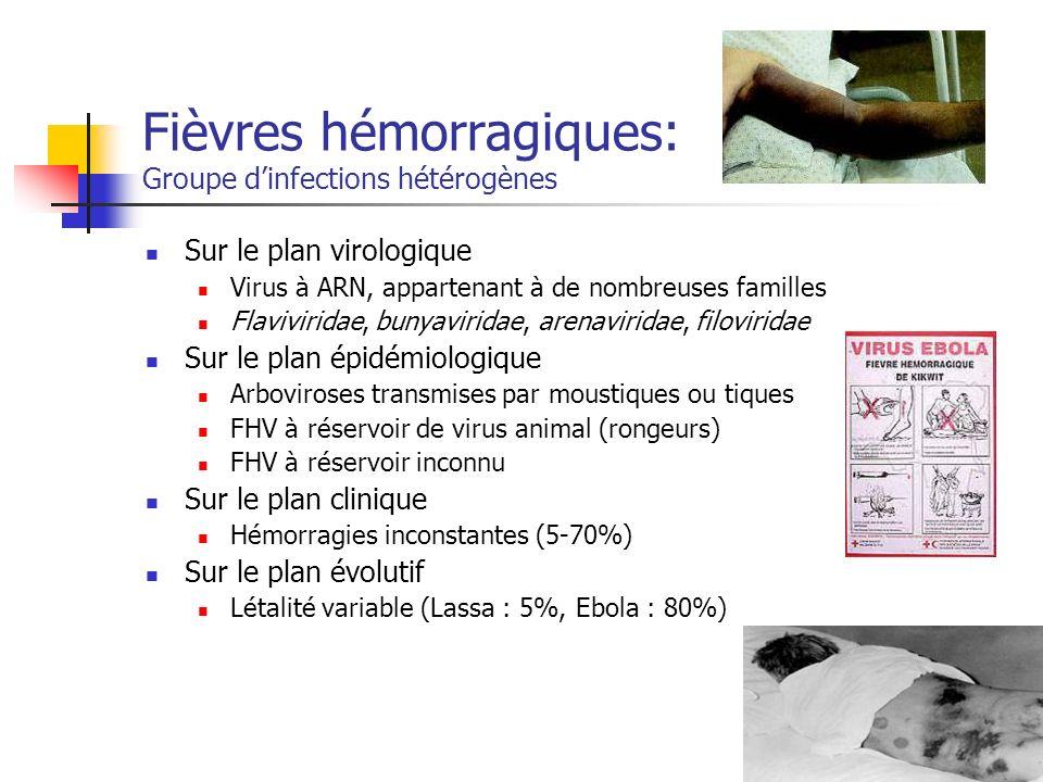 Transmission inter-humaine des FHV FVR et FHCC + sang : contact direct ou aérosolisation de liquides biologiques hémorragiques FH Lassa +++ contact direct avec sang, sécrétions pharyngées, urine contact sexuel aérosol FH Ebola +++ contact direct avec liquides biologiques infectés (sang, salive, selles, vomissures) aérosol possible contact cutané avec patient infecté .