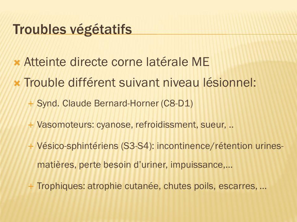 2. Paraclinique