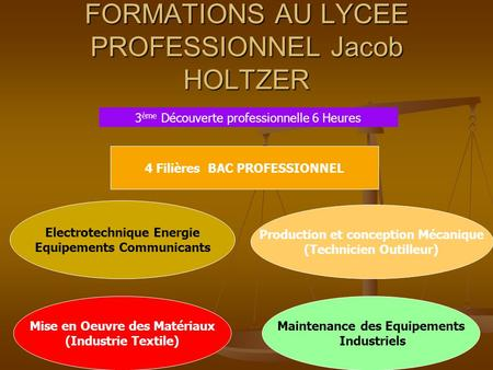 FORMATIONS AU LYCEE PROFESSIONNEL Jacob HOLTZER
