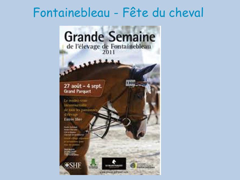 Fontainebleau - Fête du cheval