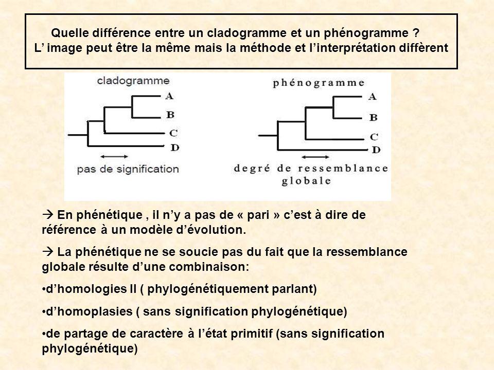 Si dans le jeu de données étudié, il ny a pas dhomoplasies alors le degré de similitude globale reflète le degré de parenté et le phénogramme et le cladogramme sont identiques.